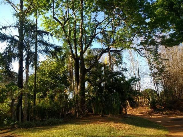 Chácara Goiânia Margem BR-153 (Pista Dupla) - Foto 14