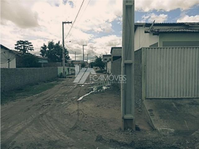 Casa à venda com 2 dormitórios cod:b8c033636d5 - Foto 4