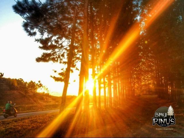 Granja para eventos e hospedagem em Juiz de Fora - Espaço Pinus - Foto 11