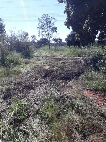 Fazenda 80 Alqueires município campina verde - Foto 14