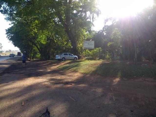 Chácara Goiânia Margem BR-153 (Pista Dupla) - Foto 11