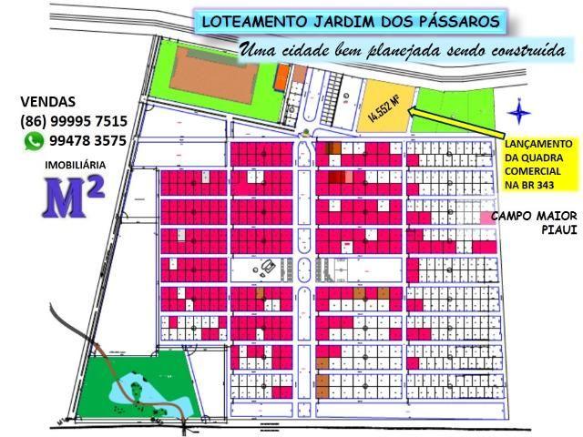 Lote em Campo Maior - Condominio Jardim dos Pássaros -medindo 600m² - Foto 4