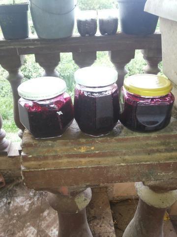 Geleia caseira de framboesa negra