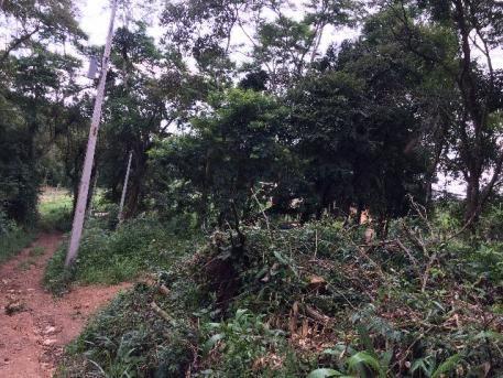 Terreno de 300m2, no bairro do Cupim