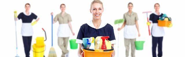 Serviços Domésticos e/ou Diarista