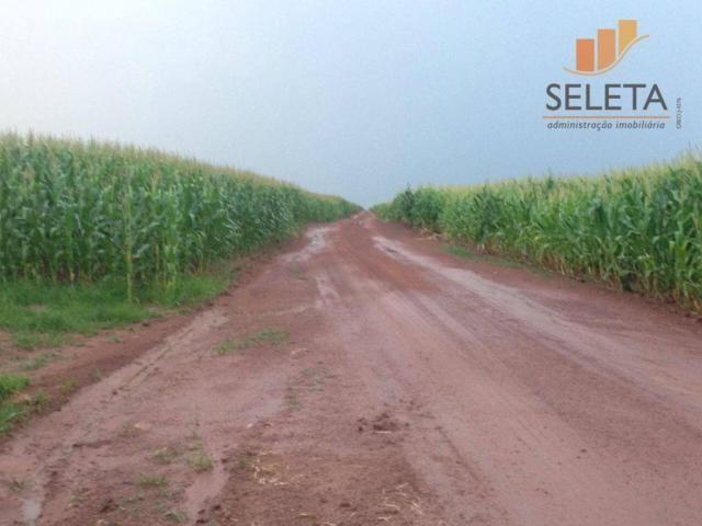 Fazenda à venda, * m² por R$ 125.000.000 - Vila Bom Jardim - Nobres/MT - Foto 4