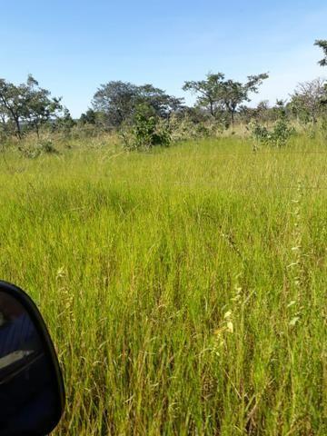 Fazenda 80 Alqueires município campina verde - Foto 2