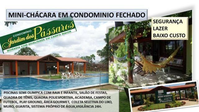 Lote em Campo Maior - Condominio Jardim dos Pássaros -medindo 600m² - Foto 9