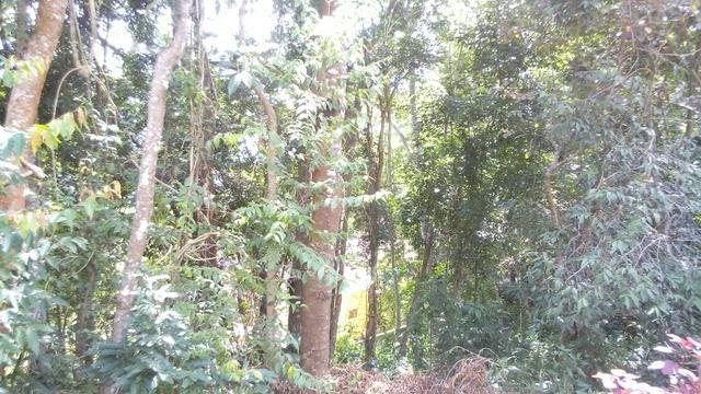 Terreno em bairro nobre de Teresópolis - Foto 3