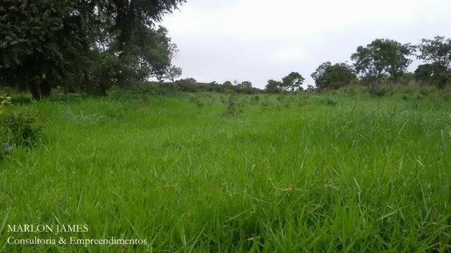 Fazenda próximo a Aragarças e 30 km de Ponte Alta para gado e lazer! - Foto 12