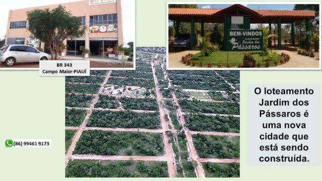 Lote em Campo Maior - Condominio Jardim dos Pássaros -medindo 600m² - Foto 11