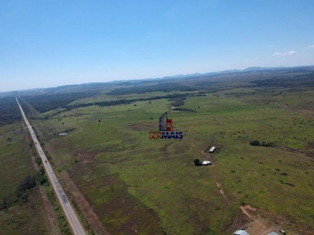 Fazenda rural à venda, á margem da BR 364, Cacoal. - Foto 4