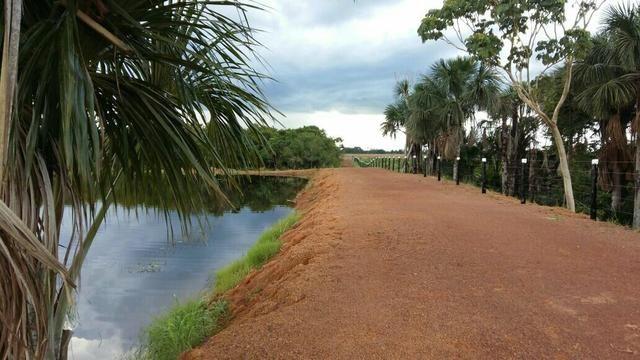 Fazenda com 1.210 hectares terra boa
