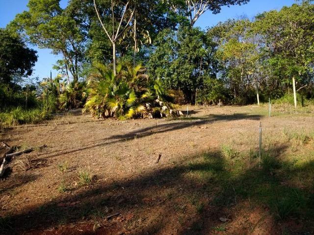 Chácara Goiânia Margem BR-153 (Pista Dupla) - Foto 5