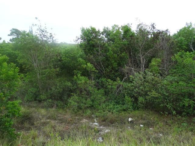 Terreno de 652,50m², de frente para Av: Meaipe e Fundos para a Lagoa, próximo da Praia de  - Foto 2