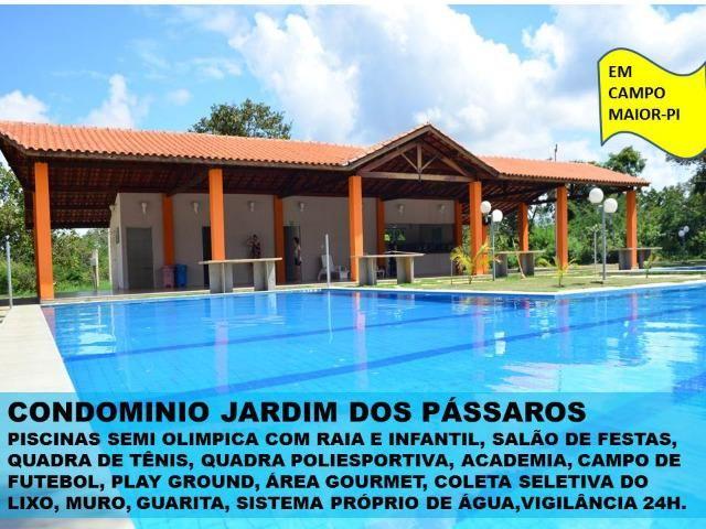 Lote em Campo Maior - Condominio Jardim dos Pássaros -medindo 600m² - Foto 2
