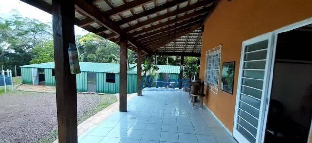 Fazenda a venda antonina com 105,2 alqueires, casa sede em 3 pavimentos, com grande capaci - Foto 16