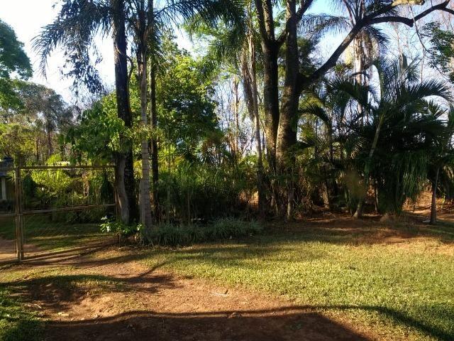 Chácara Goiânia Margem BR-153 (Pista Dupla) - Foto 17