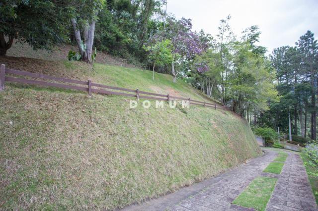 Terreno à venda, 5200 m² por r$ 380.000,00 - golfe - teresópolis/rj - Foto 2