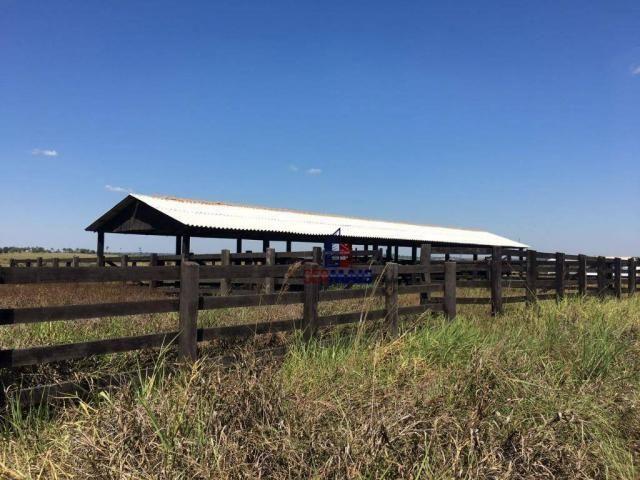 Fazenda rural à venda, á margem da BR 364, Cacoal. - Foto 19