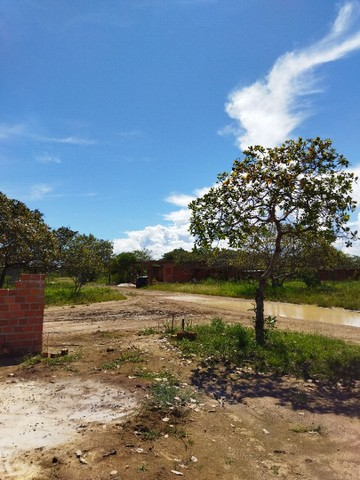 Terrenos na zona norte 10x25 TROCO EM CARRO - Foto 9