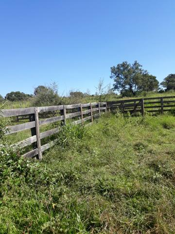 Fazenda 80 Alqueires município campina verde - Foto 15