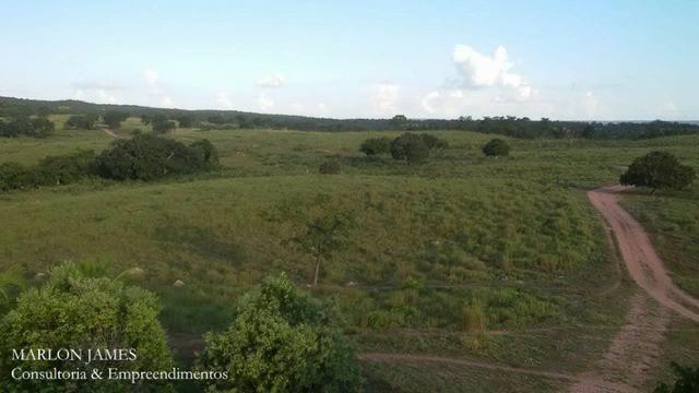 Fazenda próximo a Aragarças e 30 km de Ponte Alta para gado e lazer! - Foto 6