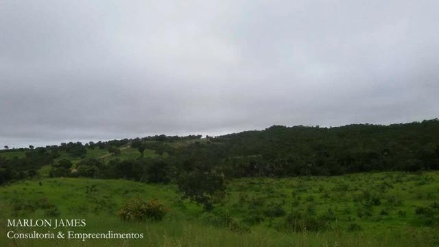 Fazenda próximo a Aragarças e 30 km de Ponte Alta para gado e lazer! - Foto 3