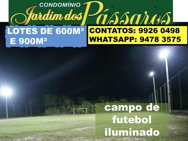 Lote em Campo Maior - Condominio Jardim dos Pássaros -medindo 600m² - Foto 6