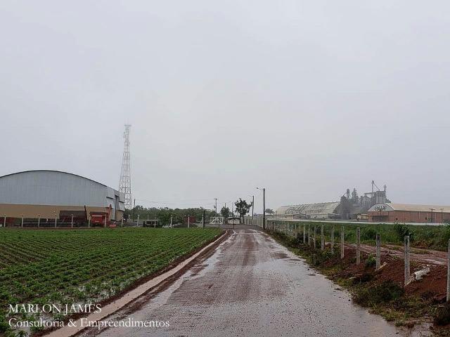 Fazenda em Campo Alegre de Goiás para plantio de soja! - Foto 2