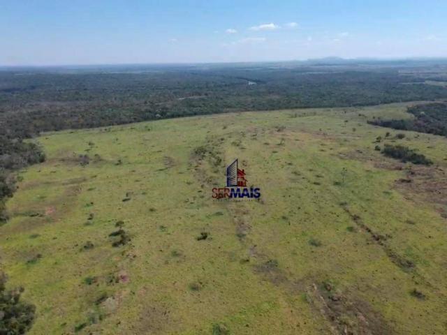 Fazenda rural à venda, á margem da BR 364, Cacoal. - Foto 12