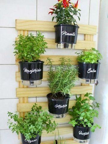 Cultive uma vida mais saudável hoje mesmo! - Foto 4
