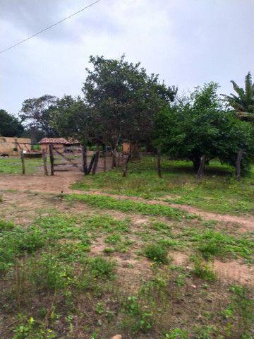 FAZENDA MUNICIPIO PINDORAMA 53 ALQUEIRES OBS. VALOR DO ALQUEIRES. - Foto 18