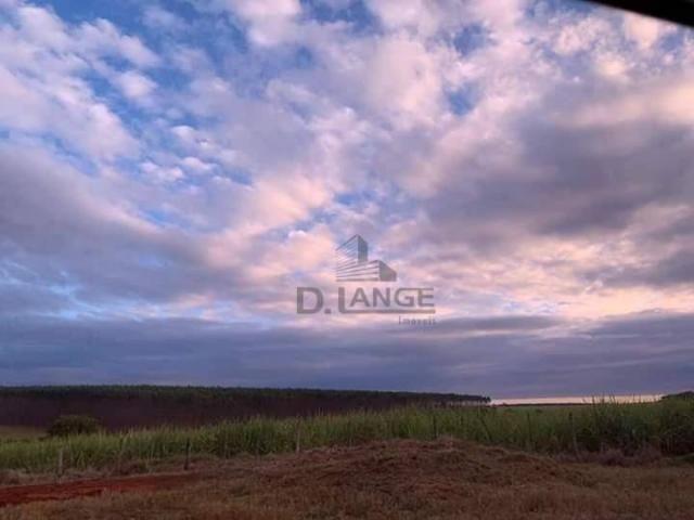 Granja em arealva s/p - Foto 16