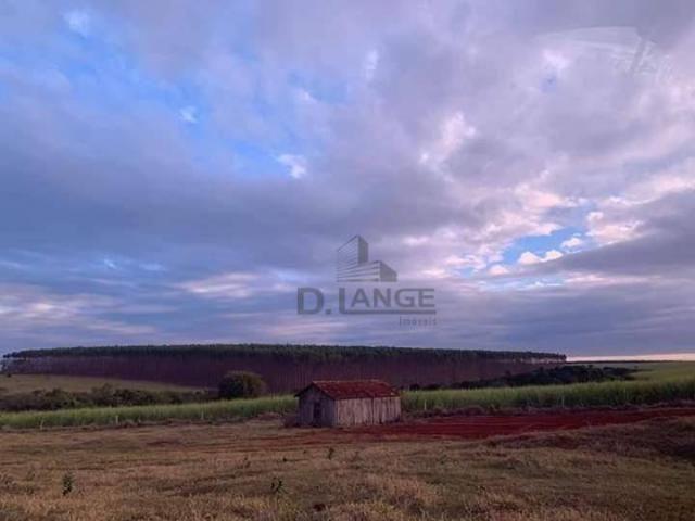 Granja em arealva s/p - Foto 15