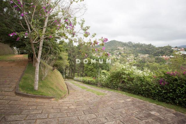 Terreno à venda, 5200 m² por r$ 380.000,00 - golfe - teresópolis/rj - Foto 3