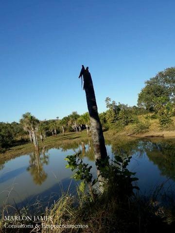 Fazenda próximo a Aragarças e 30 km de Ponte Alta para gado e lazer! - Foto 14