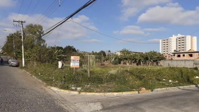 Chácara para alugar, Vila Urupês, Suzano - Foto 3