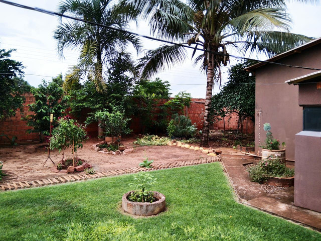 Imovel em São Gabriel do Oeste MS - 3 Barracões com Casa e 3 Terrenos Vazios  - Foto 6