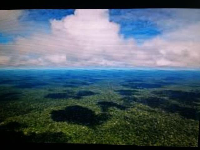 Área de 122.000 hectares na amazônia - Foto 5