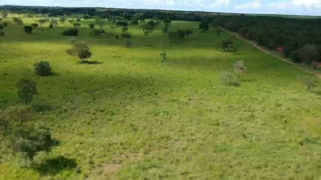 Fazenda em livramento 514 hectares - Foto 3