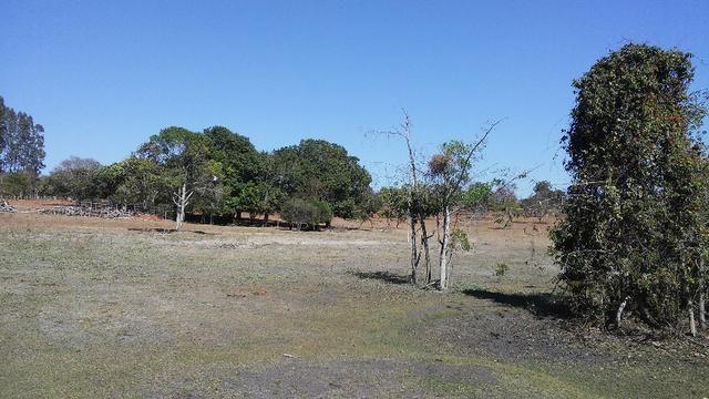Chácara 14 km de Campo Grande - 9,8 hectares - Foto 15