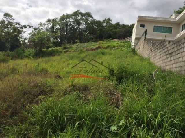 Terreno à venda em Ipiranga, São josé cod:43 - Foto 19