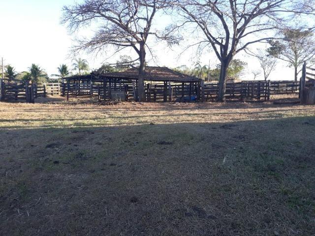 Fazenda de 28 alqueires ( 135 hectares ) Paraúna-GO ( soja ) - Foto 4