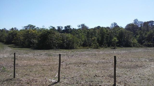 Chácara 14 km de Campo Grande - 9,8 hectares - Foto 11