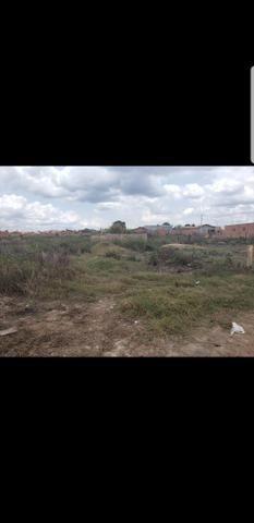 Vendo terreno bairro da paz - Foto 3