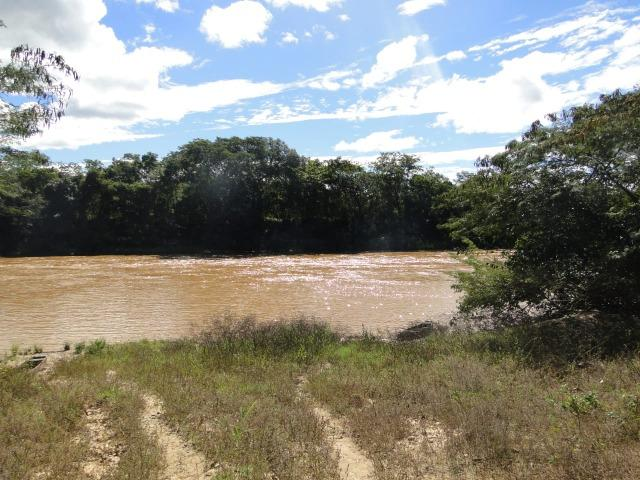 Fazenda 157 hectares na beira do rio Parauna - Foto 3