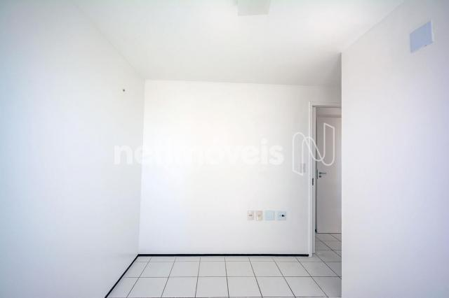 Apartamento para alugar com 3 dormitórios cod:776602 - Foto 10