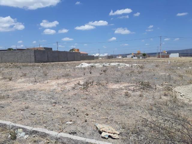 Terreno Loteamento Rocha Arcoverde - Foto 3