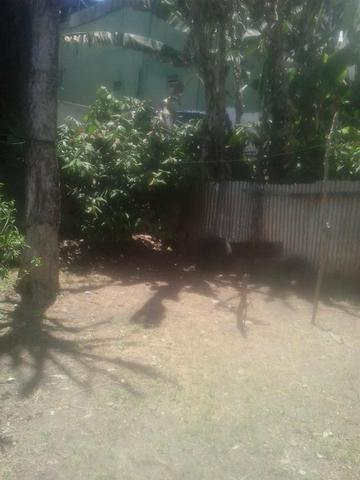 Vende-se uma casa em Santo Antônio